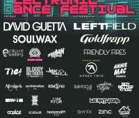 David Guetta, Annie Mac, and Soulwax are just a few of the big names playing LED Festival. Picture: LED Festival