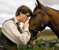 Warhorse started out as a book but has been adapted into a theatre show and a film. Photo: Dreamworks