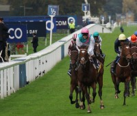 Frankel Photo: Charles Roffey