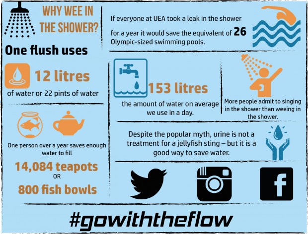 #gowiththeflow infographic