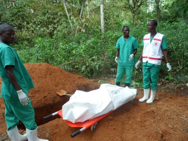 Ebola is spreading in western Africa and some UK universities fear students from affected countries might be at risk Photo: European Comission via Flickr